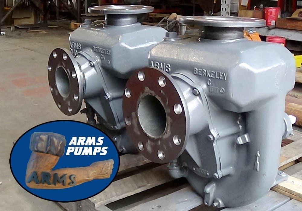 Arms Pumps 6