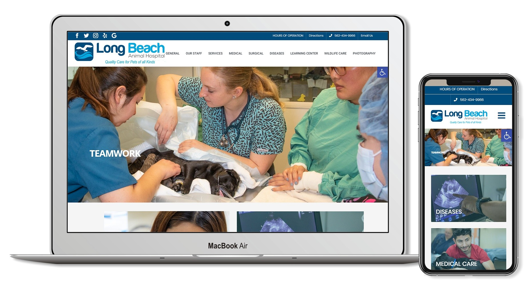 animal hospital veterinary web design ca